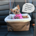 Solvit Tagalong Pet Booster Seat Giveaway