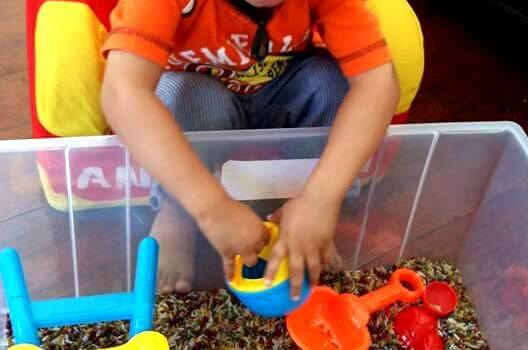 color rice kid activity 2 year old