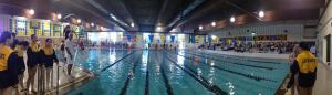 Farrel_Swim_Meet