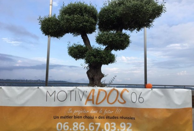 motiv ados 01