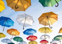 Animation : Une pluie de cadeaux à toutes les saisons