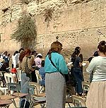 kotel