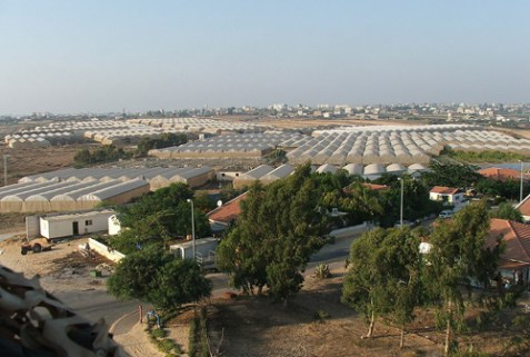 Greenhouses and homes in Morag, Gush Katif, one of the major Jewish communities in Gaza prior to the 2005 Disengagement.