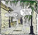 16 nov 2012 rainy sfat