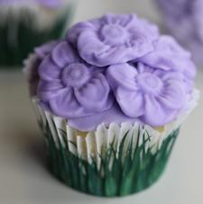 Ottensessor-051013-Cupcake