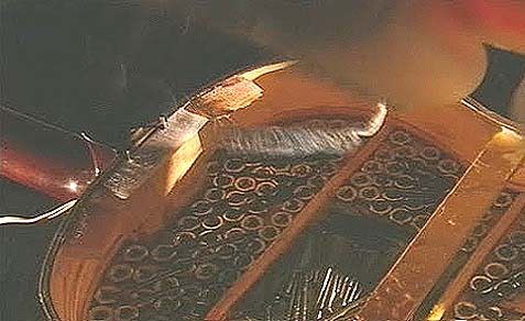 Barghouti created a guitar case filled with explosives, bolts and nails to maximize the lethal devastation.