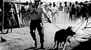 Police operation with teargas and dogs in the township of Soweto near Johannesburg,