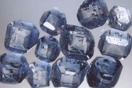 These diamonds, made from animal ashes, were created through the same process used to make diamonds from human remains.