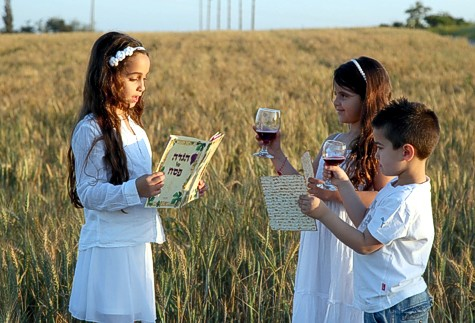 Children Seder in the Field