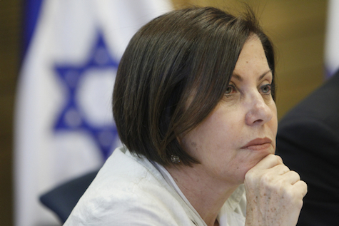Meretz Chairwoman Zahava Galon
