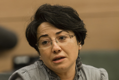 Immoral, but not criminal: MK Hanin Zoabi