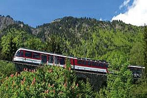 Three were killed and five were injured Monday when a Swiss Zentralbahn regional train rammed into their tourist van.