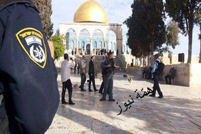 Arabs photographed and distributed pictures of Moshe Feiglin on the Temple Mount, Nov. 2, 2014.
