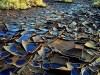 View of the oil leak in the Arava area