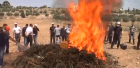 Hebron police burning marijuana