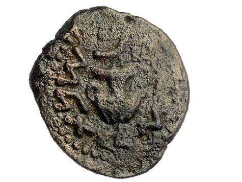 Coin from the period of the Great Revolt against the Romans, discovered in the destruction layer atop the street from the Second Temple period.