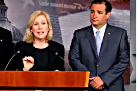 Sen. Kirsten Gillibrand (D-NY) and Sen. Ted Cruz (R-TX).