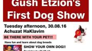 Gush Etzion Dog Show Announcement