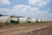 Israeli agricultural facility