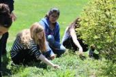 Students planting flowers in the Joan Davenny Memorial Garden.