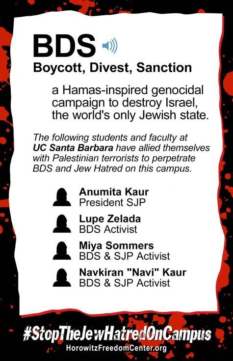 anti-BDS poster 1