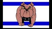 dog_watchdog