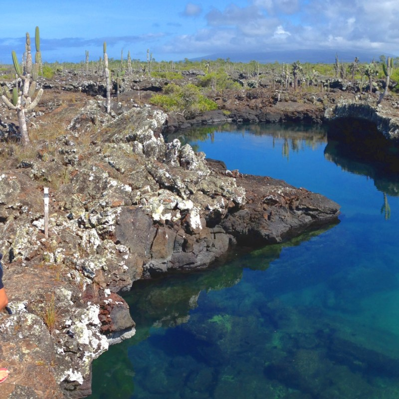 How to Travel the Galapagos Islands on a Budget