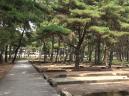 浜の宮公園2