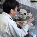 20101119兵庫県水産技術センター