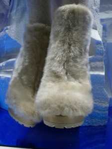 schoenentrend-vrouwen-winter-2010