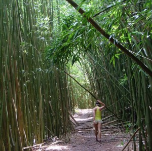 Exploring the Bamboo Forest.