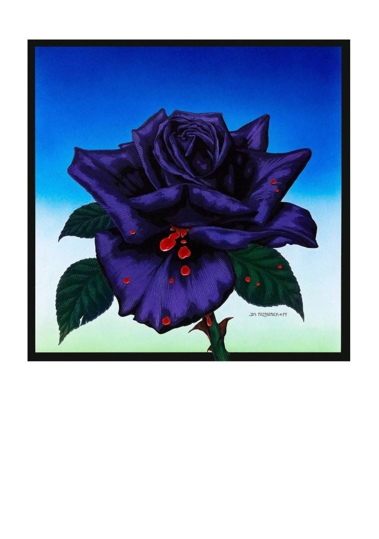 black-rose-1979-free-a4