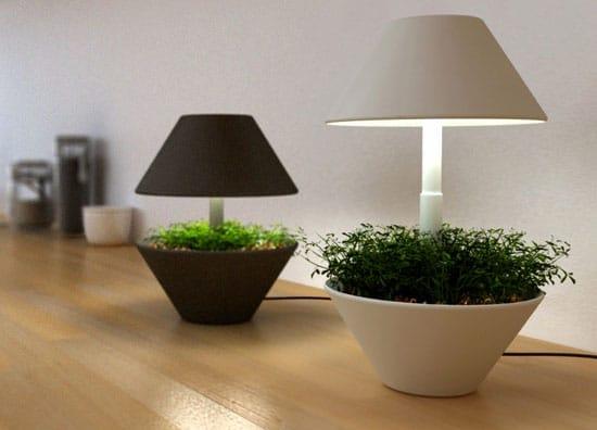 lamp04