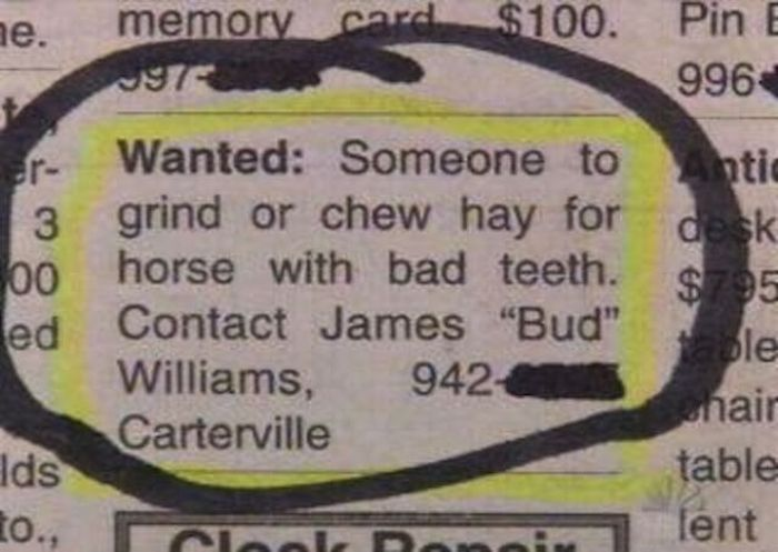 your-job-sucks