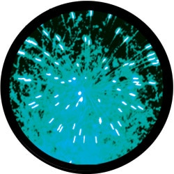 INL028-firework3