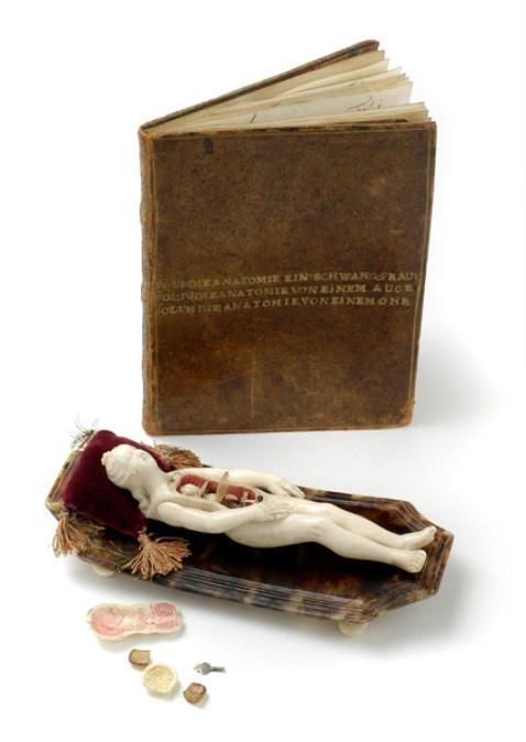 Stephan Zick, Anatomisches Lehrmodell einer schwangeren Frau mit Original Begleitbuch.