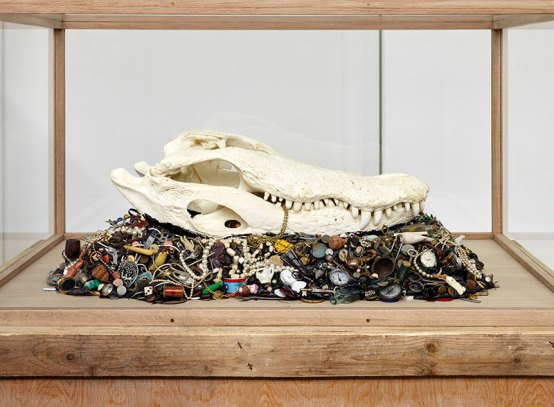 Mark Dion, Alligator Mississippiensis, 2015, Mischtechnik. Courtesy Galerie Nagel Draxler GmbH, (c) Foto: Simon Vogel.