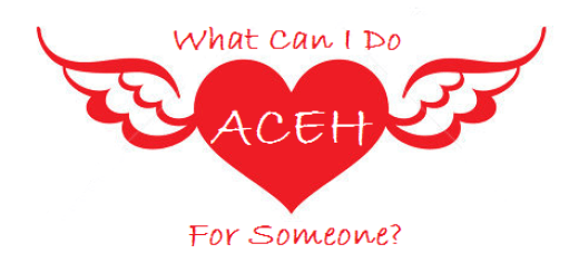 whatcanidoforsomeone-aceh