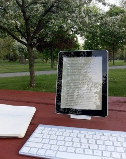 My setup for writing in the park