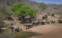 Trip RSA 13 2013 Hluhluwe Imfolozi KZN South Africa
