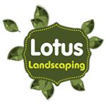 Lotus Landscaping