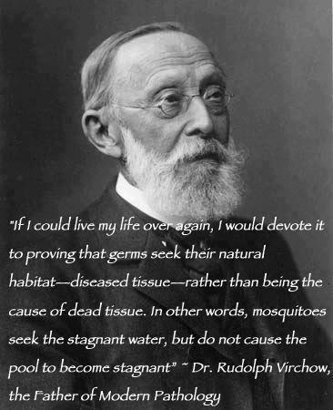 The Fallacious Germ Theory  Virchow-quote-germs
