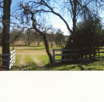 SCAN0636