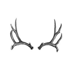 Antlers Drawing v3 by Artist John Gordon