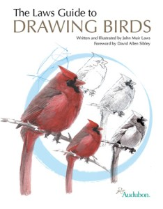 Click the book cover to order your signed copy of Drawing Birds today.