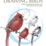 Drawing Birds Cover small