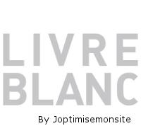 livre-blanc-joptimisemonsite