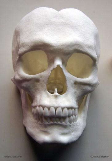 self-portrait-skull-1