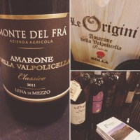 """You can't spell """"Amarone"""" without """"moan"""": on 18 bottles at the 2016 VIWF"""