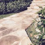steps_paving_12
